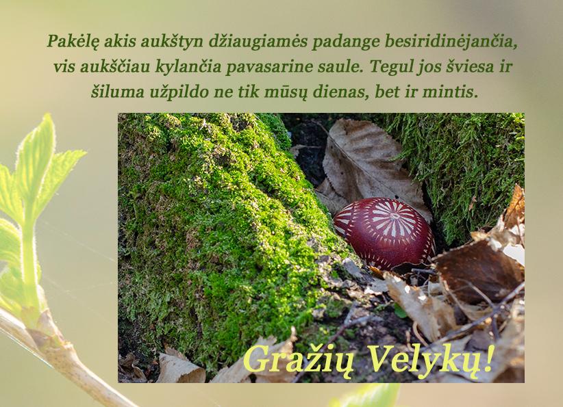 Gražių Velykų (1)